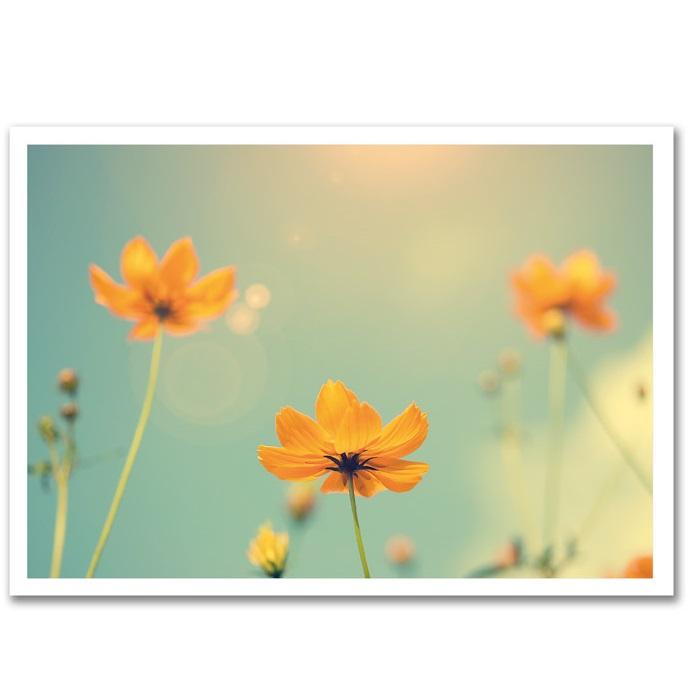 Tervituskaart Kollased lilled